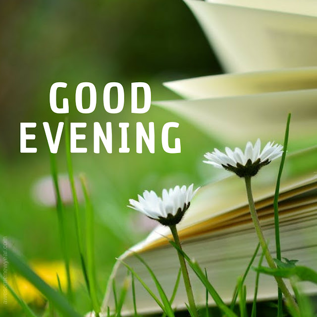 Evening Images wishes