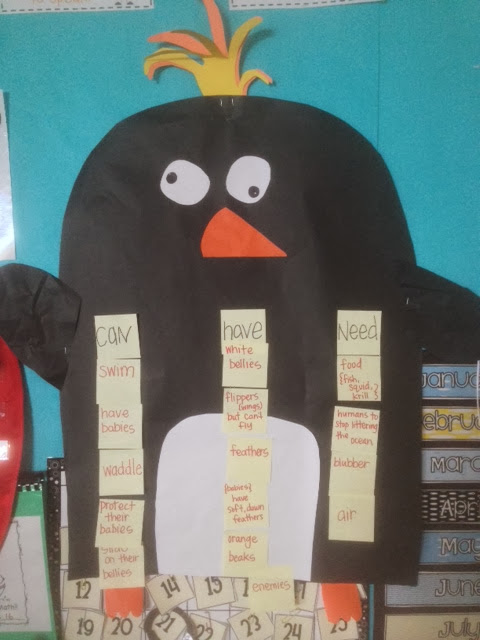 penguin class anchor chart science