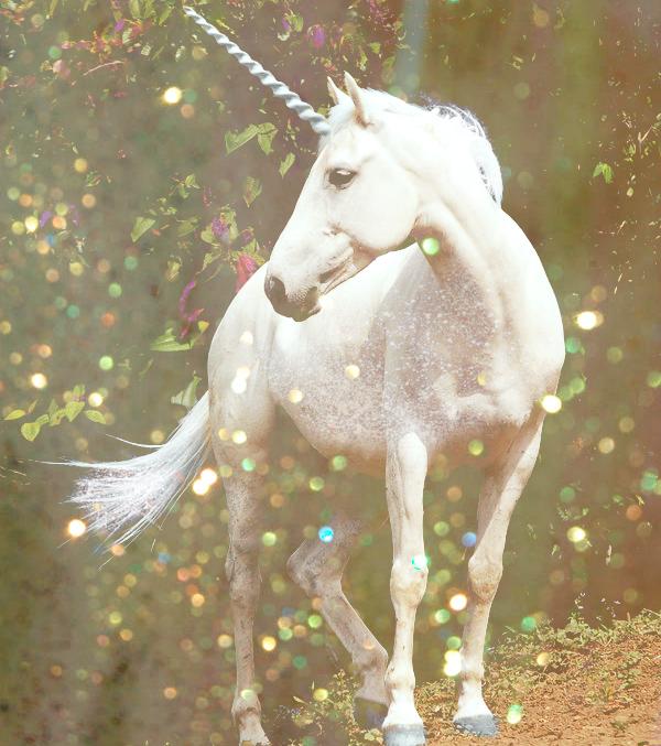 U is for Unicorns #atozchallenge