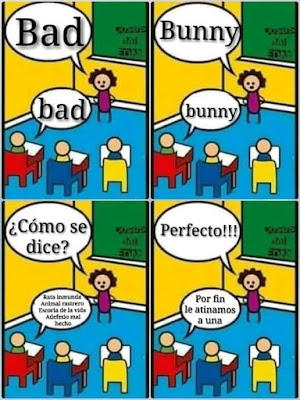 meme bad bunny como se dice escuela