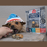 Plato Pet Treats Hundur's Crunch Jerky Minis Review