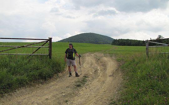 """Łąki i pastwiska """"Końskiej Doliny""""."""