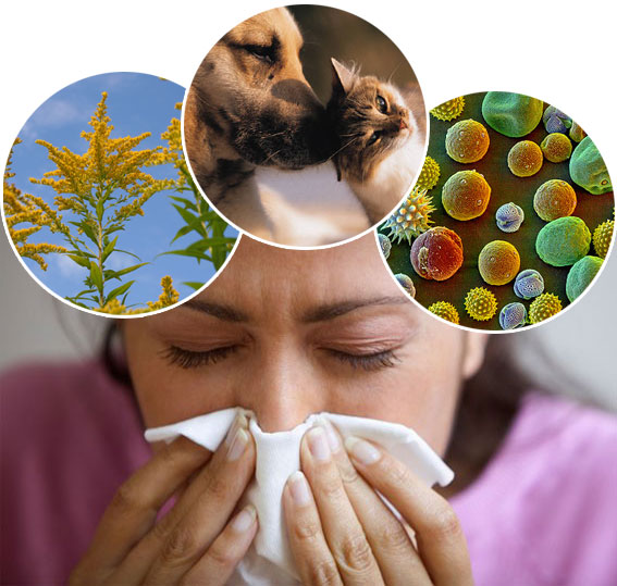 My Survival Story: Spring is Here...Allergy Season is Coming!!