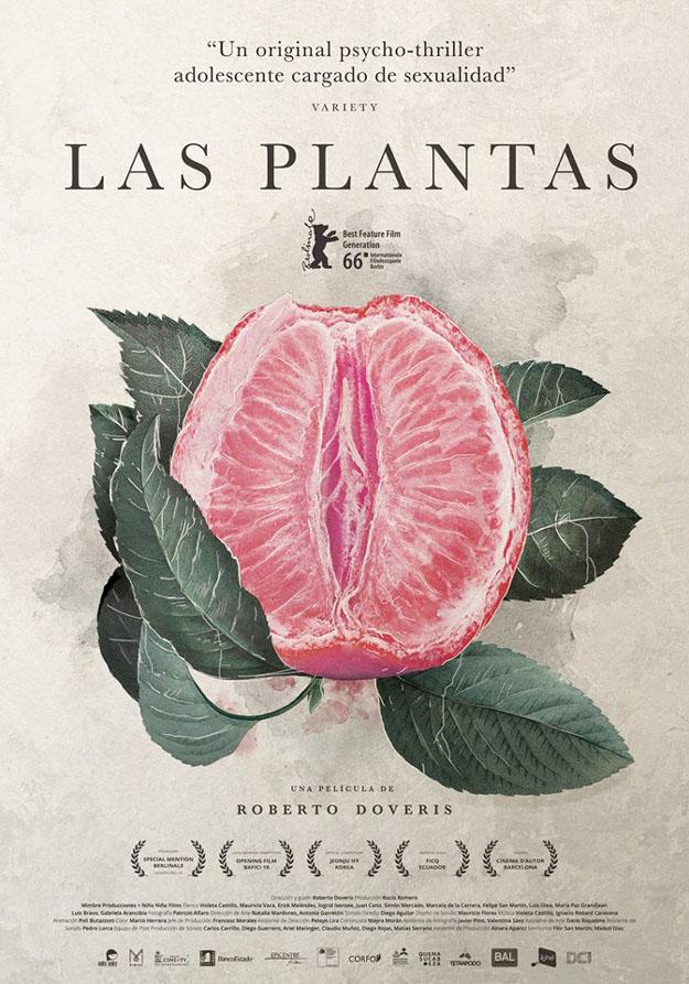 ver Las Plantas 2017