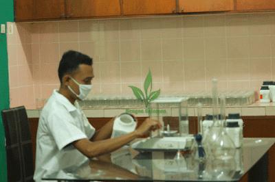 lab-Sengon-solomon