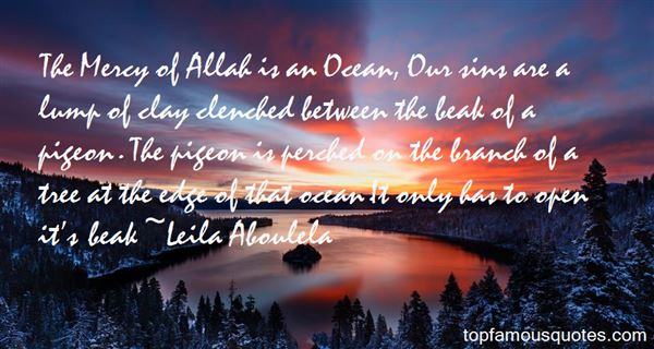 The Mercy of Allah is an Ocean - Islamic Quotes