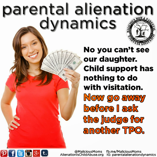 Parental Alienation and Lies...Evidence Ignored by Family Court Judges