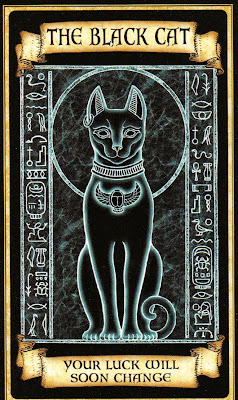 Black Cat Madame Endora's Fortune Cards