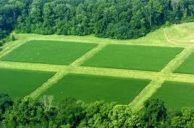 Etika Dan Nilai Lingkungan Jenis Jenis Ekosistem Tugas 02