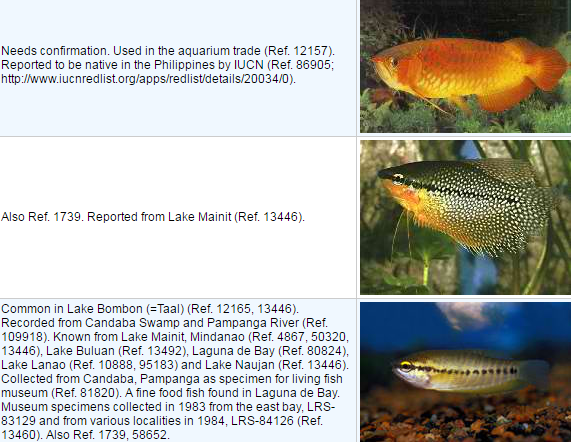 List of Introduced Fish in the Philippines