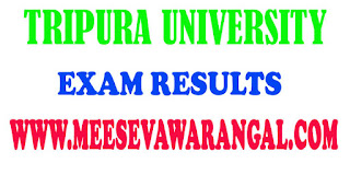 Tripura University IMD IV Sem - 2016 Exam Results