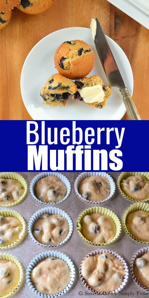 The BEST easy Blueberry Muffin recipe for breakfast or brunch from Serena Bakes Simply From Scratch.