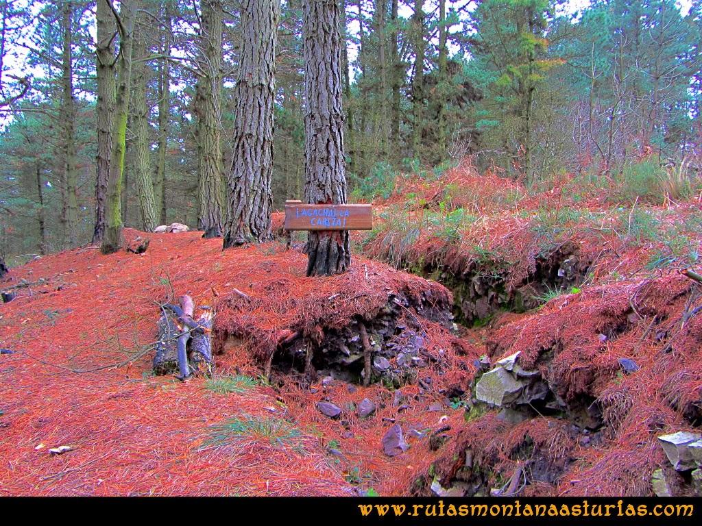 Rutas Montaña Asturias: Trincheras cercanas a la cima del Pico Pedroso