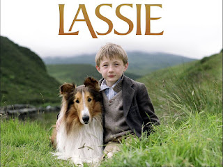 Lassie - concurso SEO el perro arcoiris sonrie en CICE