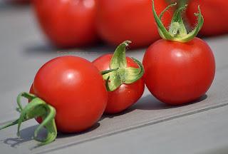 http://tomatprat.blogspot.no/2015/08/amys-sugar-gem-tomat.html