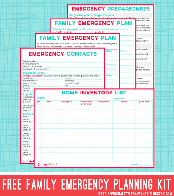 pinch a little save a lot free family emergency planning kit