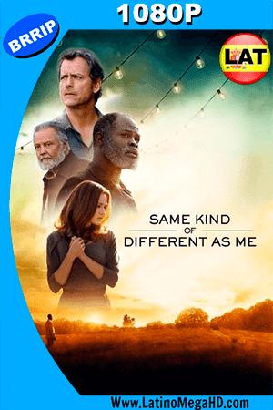 Uno Tan Diferente Como Yo (2017) Latino HD 1080P - 2017