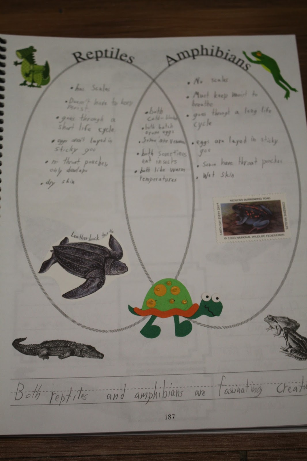 venn diagram of reptiles and amphibians vehicle wiring spark all