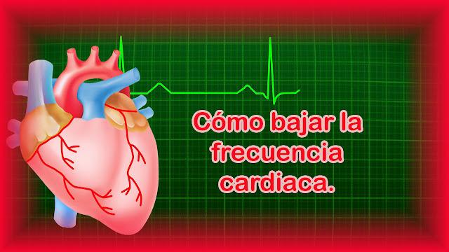 Como bajar la frecuencia cardiaca en reposo.Frecuencia cardiaca alta y longevidad