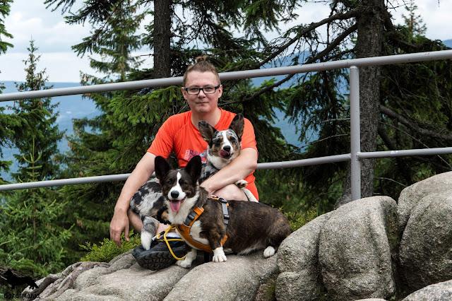 karkonosze z psem, pies na szlaku, góry z psem