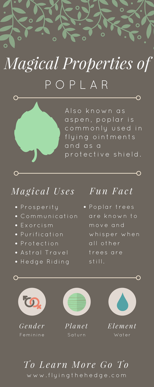 Magical Properties of Poplar