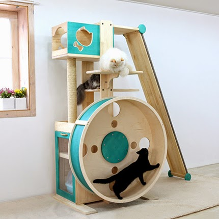 A Cat Tree Hamster Wheel Cool Cat Tree Plans