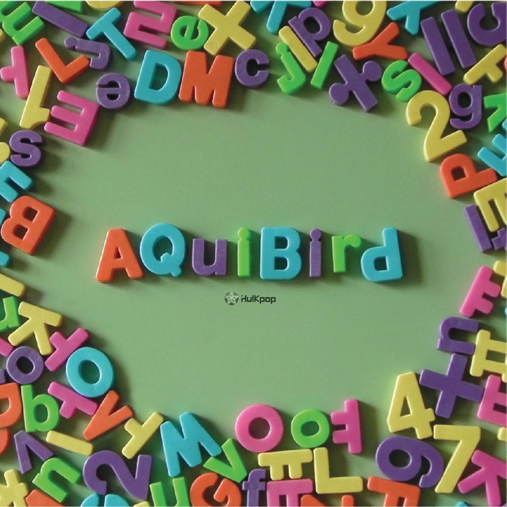 [EP] Aquibird – Now I Understand