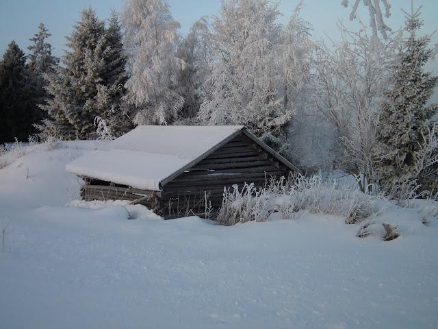 hiirsilato, talvi, lumi, pyhäjoki, pakkanen,