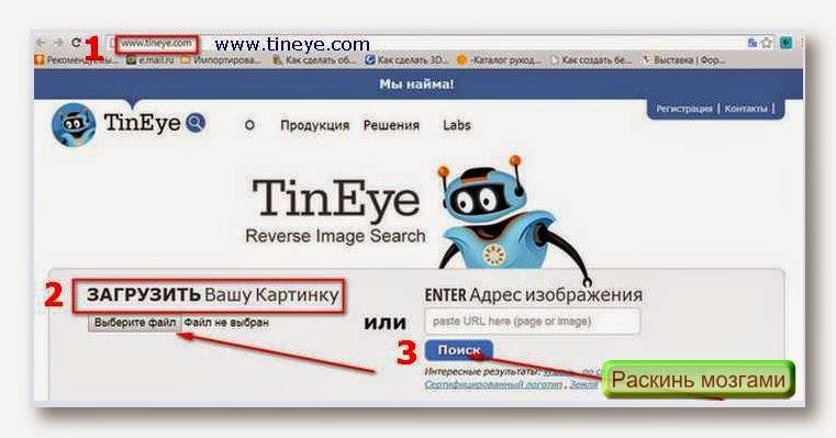 Легкие способы проверки уникальности сервисом Tineye (Тинай).