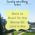 The Twenty-Something Series: Back to Brazil for the Bienal do Livro in Rio