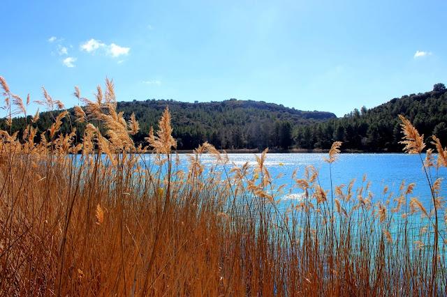 Qué ver en las lagunas de Ruidera. Laguna Santo Morcillo