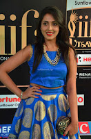 Madhu Shalini Looks Super Cute Slim trim Blue Choli Ghagra IIFA Utsavam Awards 013.JPG