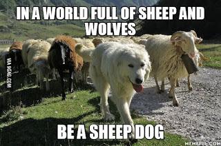 Decide to Become a Sheepdog