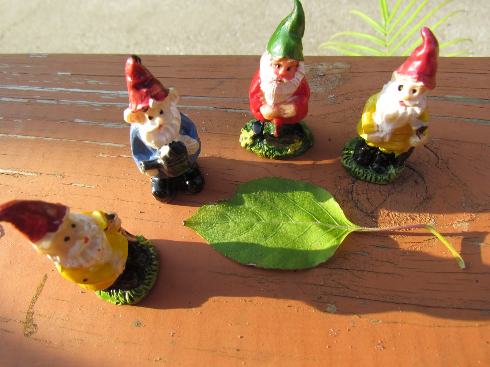 A Group of Gnomes Gathering Around a Golden Leaf in Mid-Summer in Florida Performing a Moon Ritual and Ceremony at Dusk