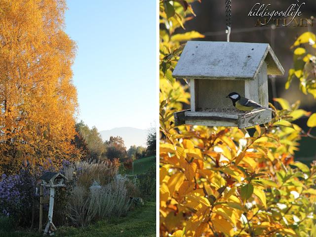 http://hildisgoodlife.blogspot.co.at/2015/11/preserving-autumn.html