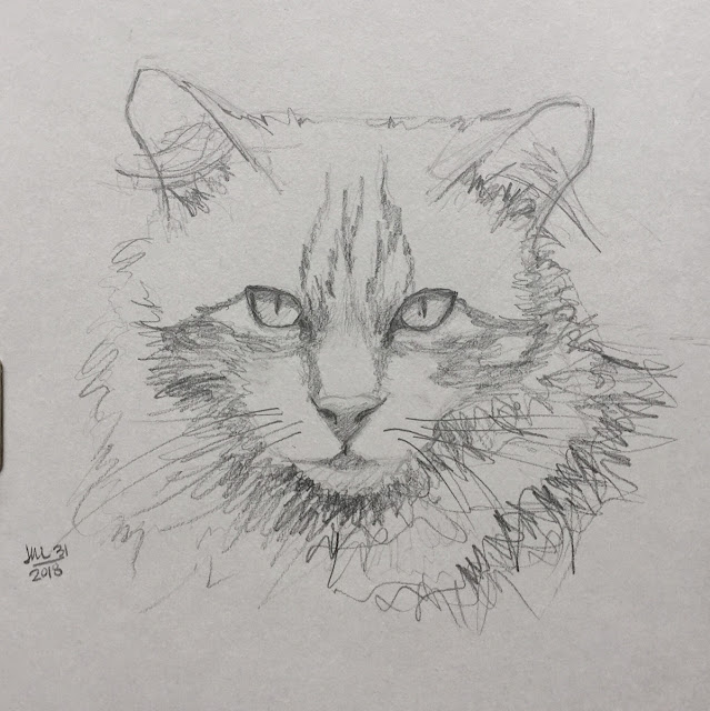 Daily Art 07-31-2018 sketch of cat on grey toned paper