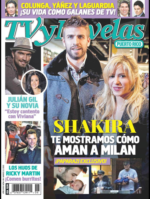 Revista Tv Novela Puerto Rico