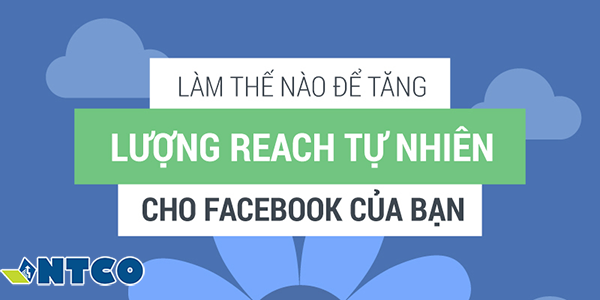 tang reach post facebook