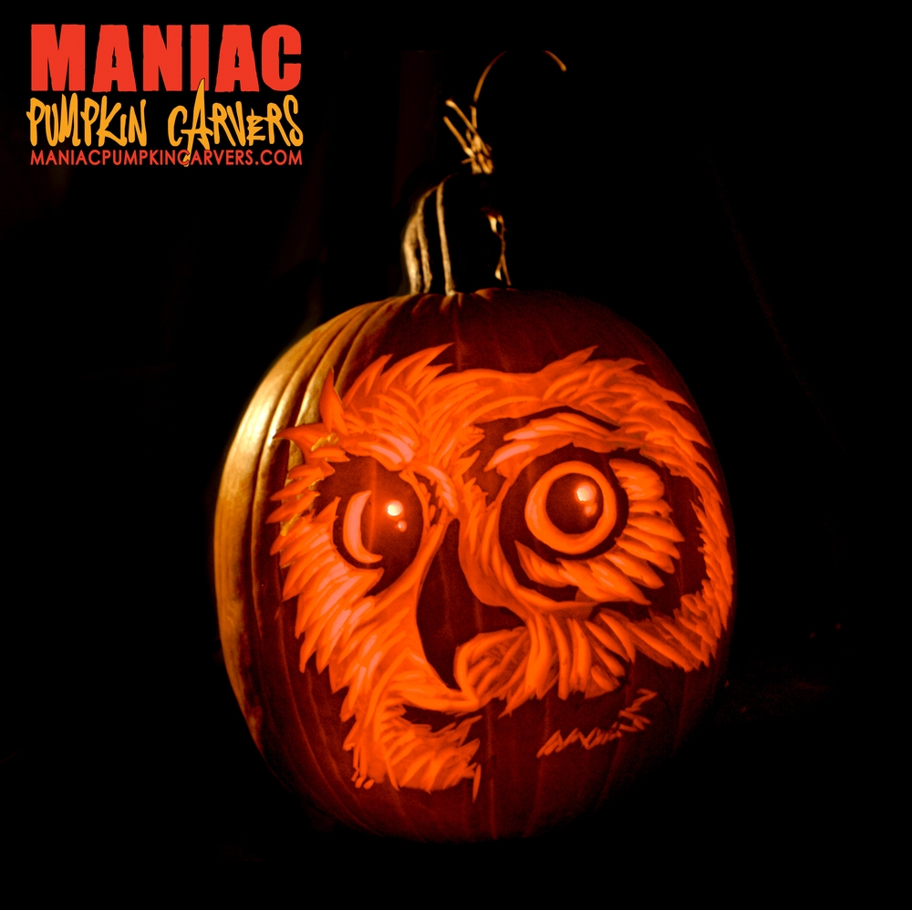 23-Owl-Maniac-Pumpkin-Carvers-Introduce-Halloween-www-designstack-co