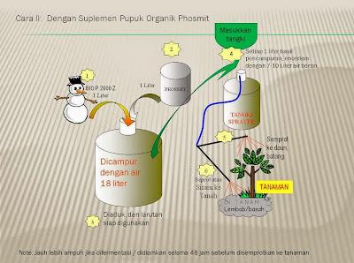 Cara Pembuatan Pupuk KCL dan N Organik