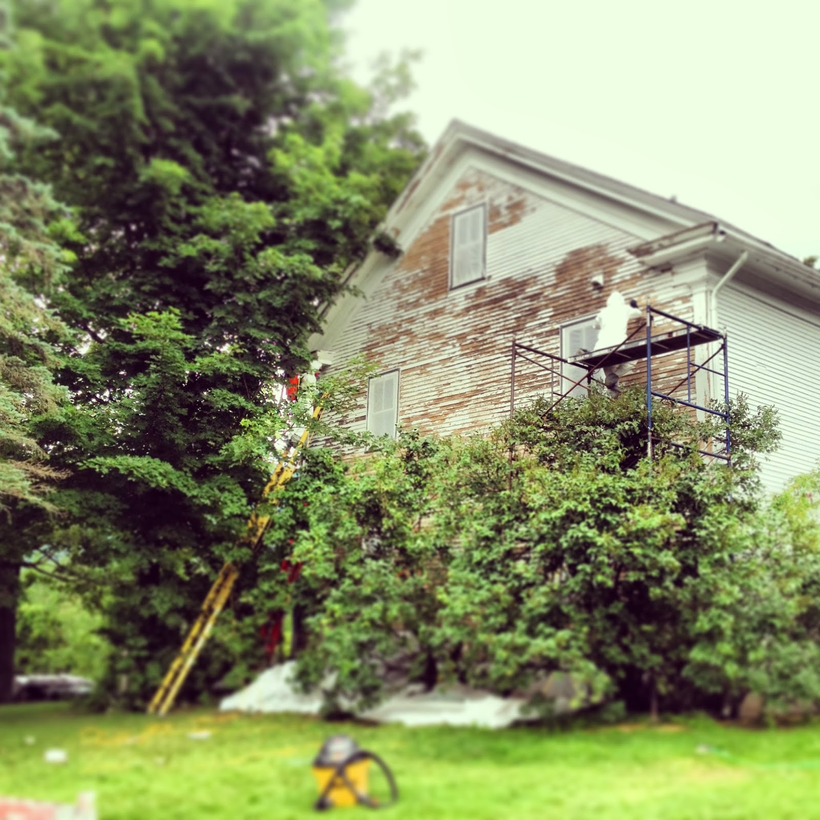 Vermont Professional Construction Amp Painting Llc