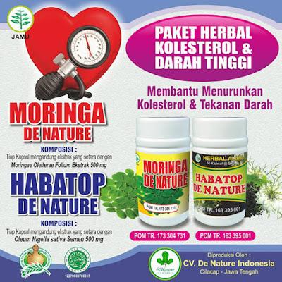 Banner Obat Darah Tinggi Atau Hipertensi