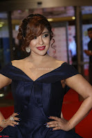 Payal Ghosh aka Harika in Dark Blue Deep Neck Sleeveless Gown at 64th Jio Filmfare Awards South 2017 ~  Exclusive 096.JPG