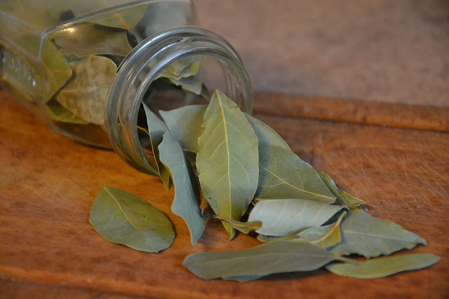 Bay Leaf/Tej Patta/Tamal Patra Benefits for Skin, Hair, Health