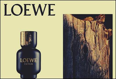 Pareri Forumuri Esencia Loewe Parfumul Barbatilor Eleganti