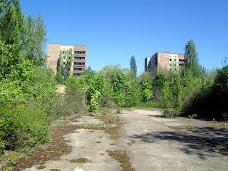 Ejemplo de Vegetación en Chernobyl