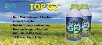 Pupuk TOP G2