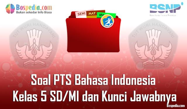 30+ Contoh Soal PTS Bahasa Indonesia Kelas 5 SD/MI dan Kunci Jawabnya Terbaru