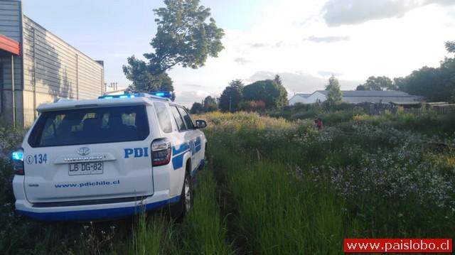Purranque: Hallazgo de cadáver es investigado por la PDI Osorno
