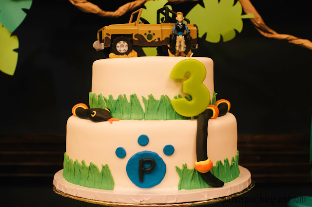 Tips and resources for throwing an epic Wild Kratts themed birthday party. Perfect birthday party for animal lovers. Wild Kratts birthday cake.